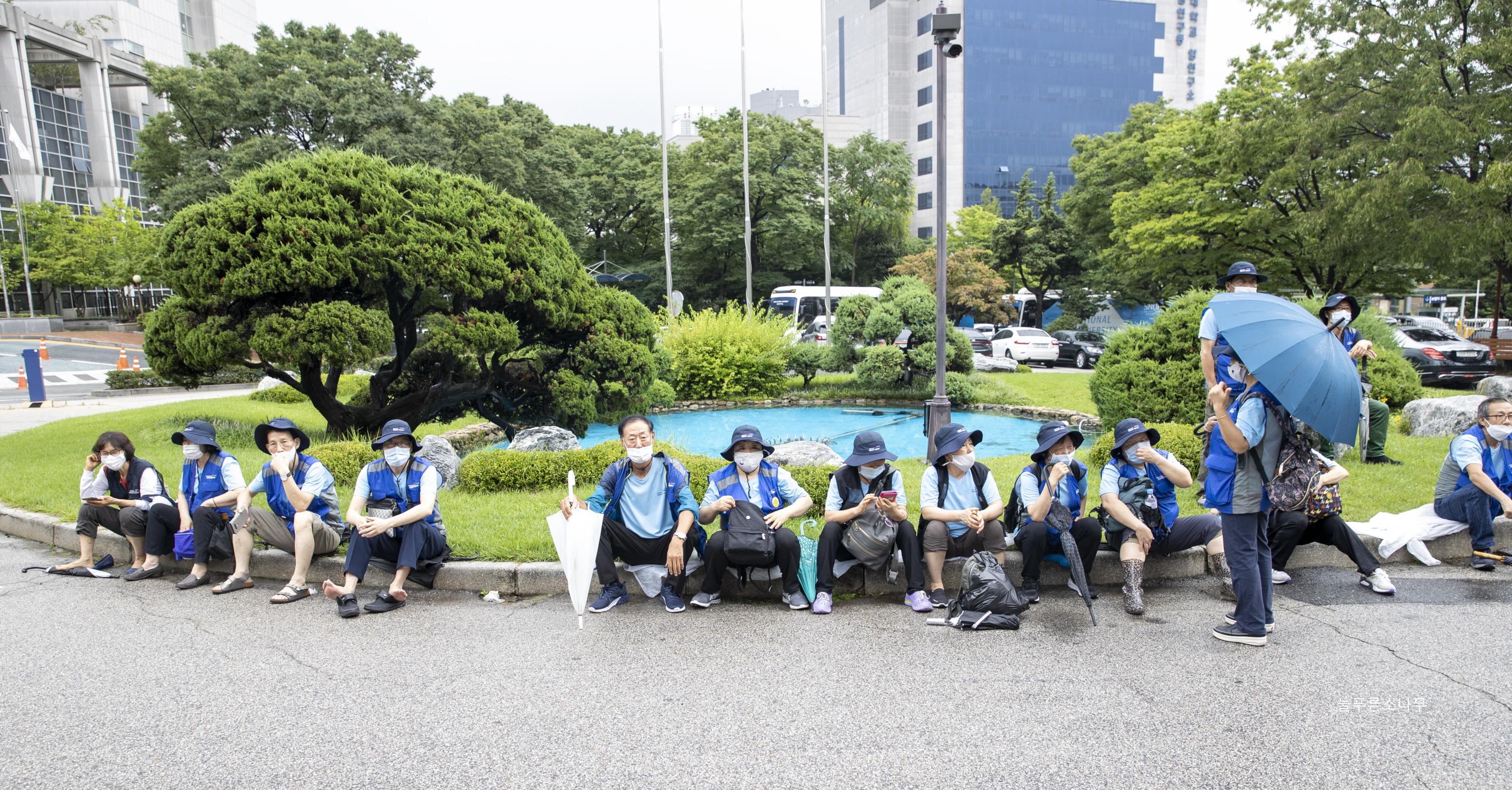 20-07-29늘푸른소나무_3.jpg